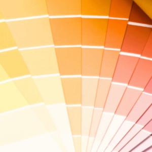 Colorterm palette colori